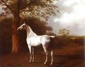 Agasse_Jacques_Laurent_White_Horse_in_Pasture.jpg